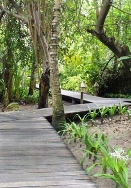 Foto von Gangehi Island Resort & Spa