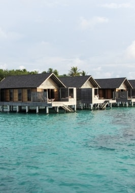 Foto von Gangehi Island Resort & Spa