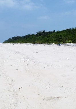 Photo of Deserted Island Experience
