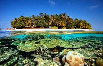 Angsana Ihuru through its vibrant coral reef