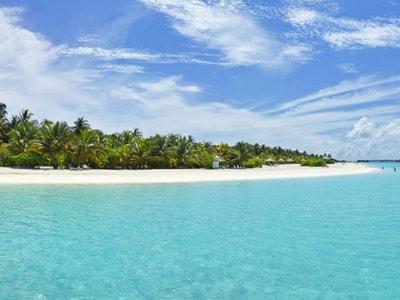 Escursione di mezza giornata al Paradise Island Resort